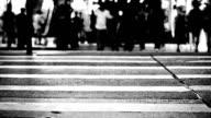 Pedestrian walking video