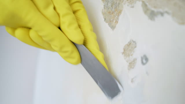 Peeling old paint and plaster. video