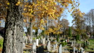 people care family graves beautiful autumn cemetery graveyard video