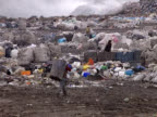 People Collecting and Recycle From Garbage Dump video