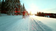 TS SLO MO people enjoying on cross country skiing track video