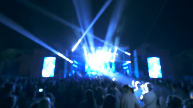 People having fun at music festival. video