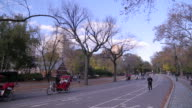 People jogging and people using Pedicab rides New York City's Central Park in the fall season video