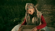 People of Himachal Pradesh: Beautiful happy young woman winnowing grains. video
