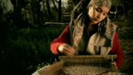 People of Himachal Pradesh: Beautiful happy young woman winnowing grains. video