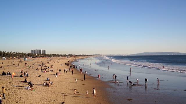 People on Santa Monica Beach in Summer video