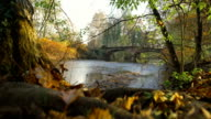 People passing on an old bridge on the river in autumn video