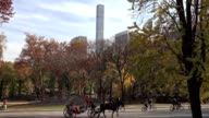 People recreating in Central Park's Sheep Meadow at fall, autumn. USA, New York. video