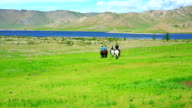 People riding horses in Mongolian landscape video