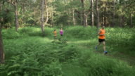 AERIAL People running on a forest path in the morning video