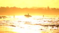 SLOW MOTION: People swimming and walking in shallow ocean water at golden dawn video