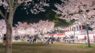 People to enjoy the illuminated cherry blossoms video