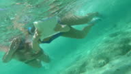 People Using Touch Pad Underwater video