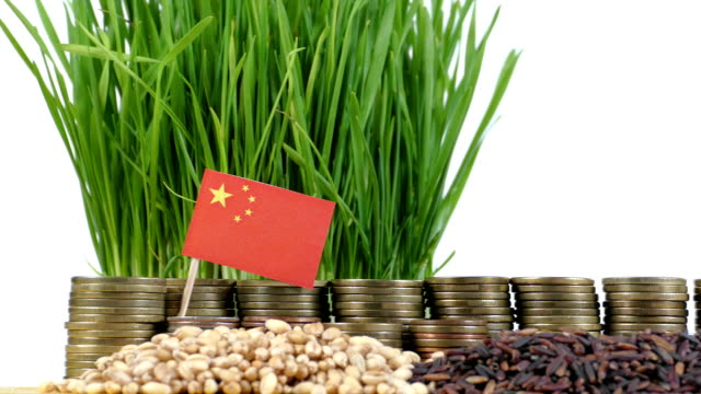 People's Republic of China flag waving with stack of money coins and piles of wheat video