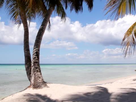 Perfect beach. video