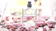 perfume video