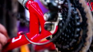 Person Cleaning Frame At Bicycle Gear Mechanism video