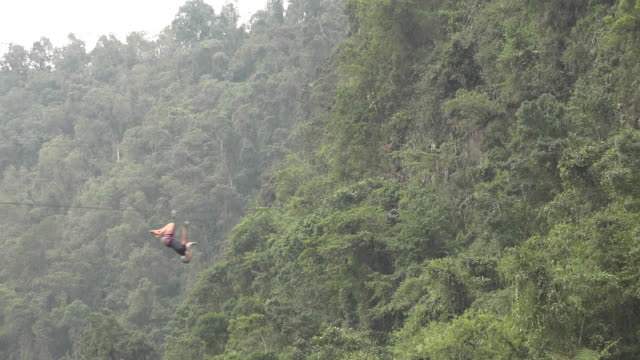 Person on Forest Zip Line video