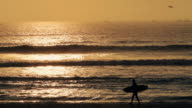 Peruvian surfer during sunset hour video