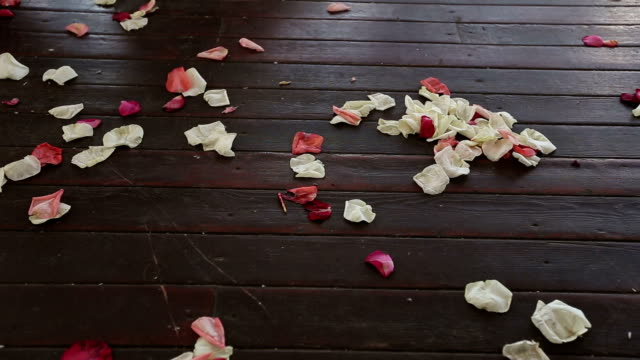 Petals of roses on a timber floor video