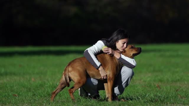 Petting video