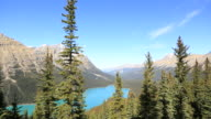 Peyto lake in Alberta, Canada. Rocky mountains video