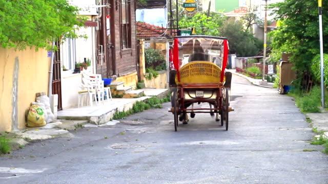 Phaeton, Adalar, Istanbul video