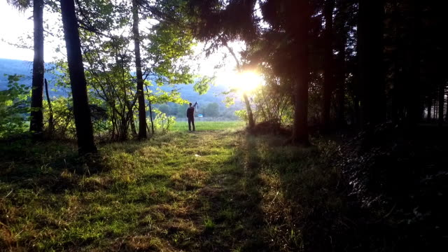 Photographer on the edge of the forest video