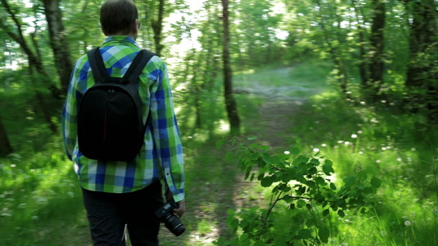 Photographer walks through forest, in hands of camera video
