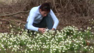 HD: Photographing Spring Flowers video