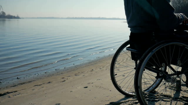 physically disabled sits on wheel chair, nature on waterfront near river video