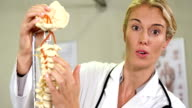 Physiotherapist looking at  spine model video