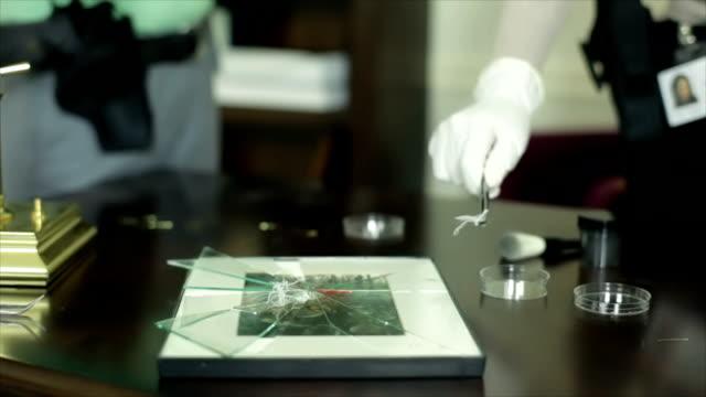 CSI Picking Up Fibers video