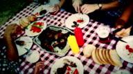 picnic video