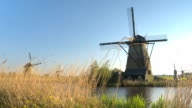 CLOSE UP: Picturesque overlook of beautiful old Dutch windmills near big river video