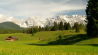 Picturesque view on flower meadow in alps of bavaria. video