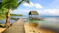 Pier on Boca del Drago beach, Panama video