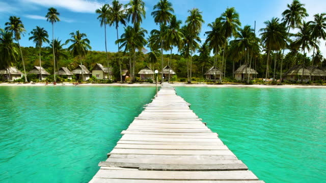 Pier to tropical beach video