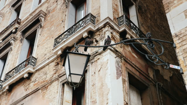 Pigeons are sitting on an old lamppost in Venice. Ancient architecture video