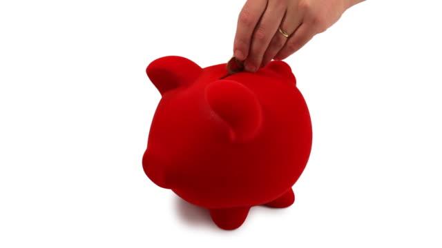 Piggy bank video