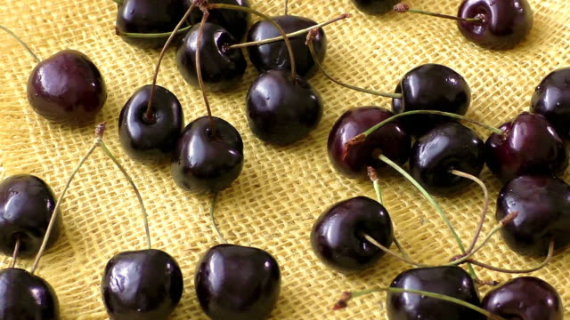Pile ripe red fresh cherries lie on a burlap background video