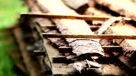 Piled sawmaterial  pine lumber in one area video