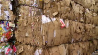 PAN Piles Of Cardboard Waste video
