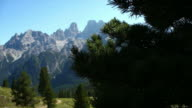 HD Pine tree in front of high mountains video
