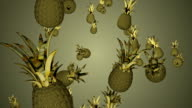 pineapple animation. video