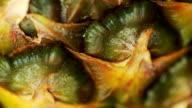 Pineapple closeup. video