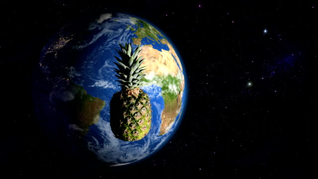 Pineapple orbiting the Earth video