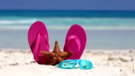 Pink flip flops, swimming glasses and starfish on white sandy beach video