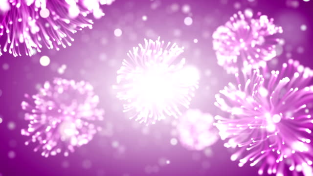 pink particles video