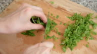 piquant herbs for salad, close up video